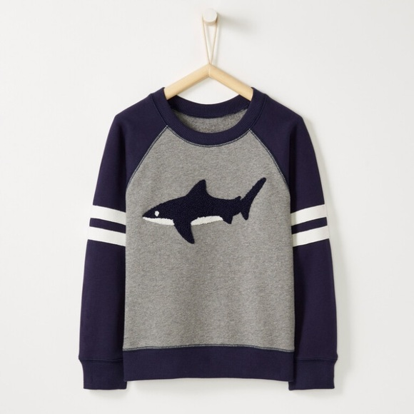 Hanna Andersson Other - NWT Hanna Andersson Colorblock Shark Sweatshirt